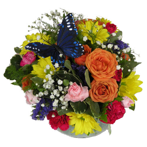 A Wylie Flower Shop exclusive. Sending this bouquet is almost like sending your own private rainbow. All focus is on the beauty of the flowers.<br/><br/>